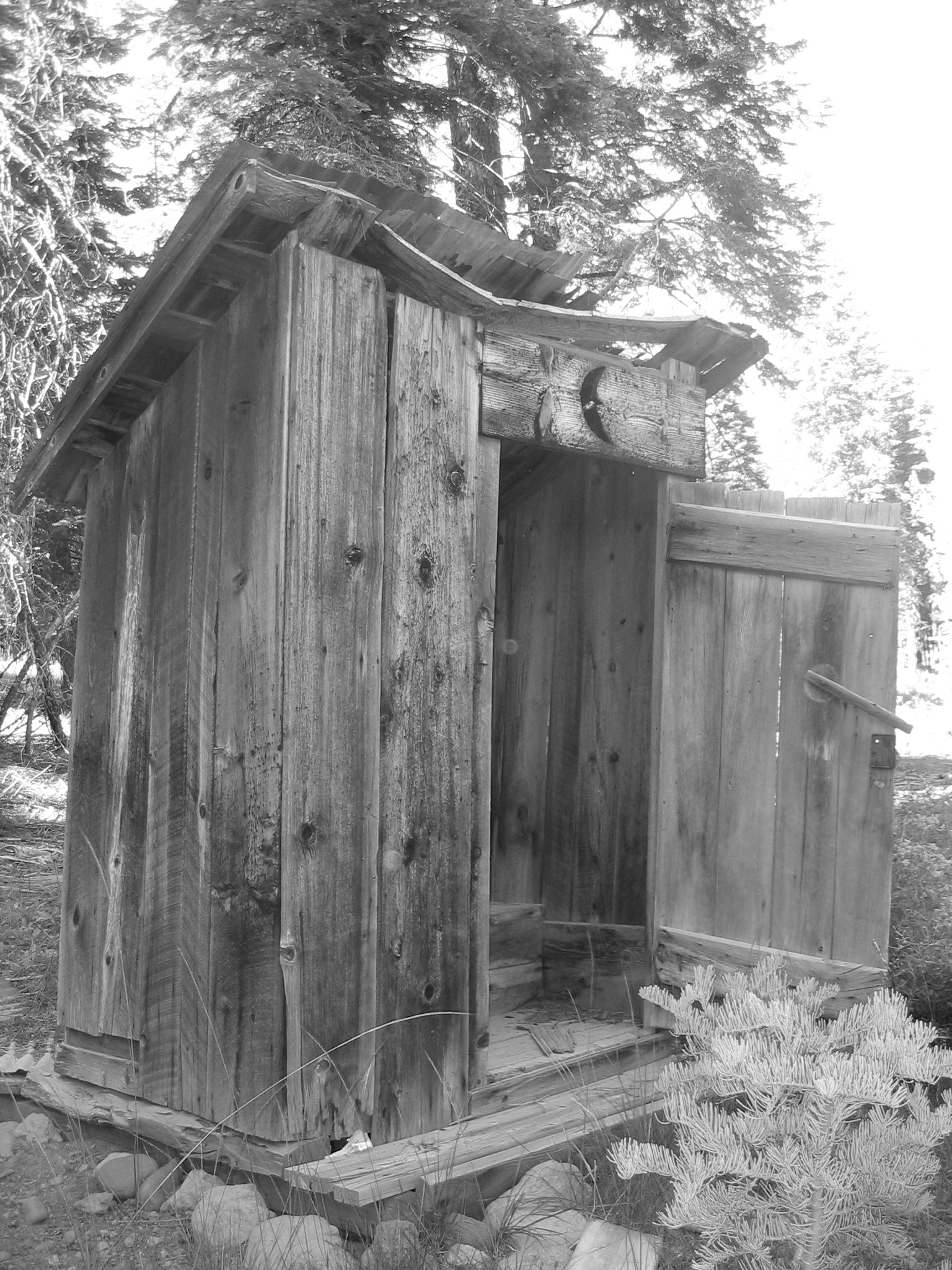 Miraculous Out To The Outhouse One Moore Production Download Free Architecture Designs Itiscsunscenecom