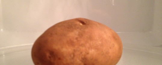This Spud's For You